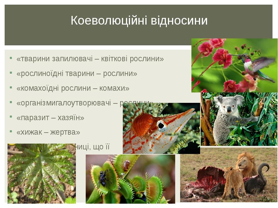 «тварини запилювачі – квіткові рослини» «рослиноїдні тварини – рослини» «комахоїдні рослини – комахи» «організмигалоутворювачі – рослини» «паразит ...
