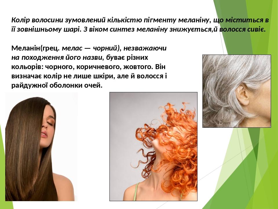 Колір волосини зумовлений кількістю пігменту меланіну, що міститься в її зовнішньому шарі. З віком синтез меланіну знижується,й волосся сивіє. Мела...