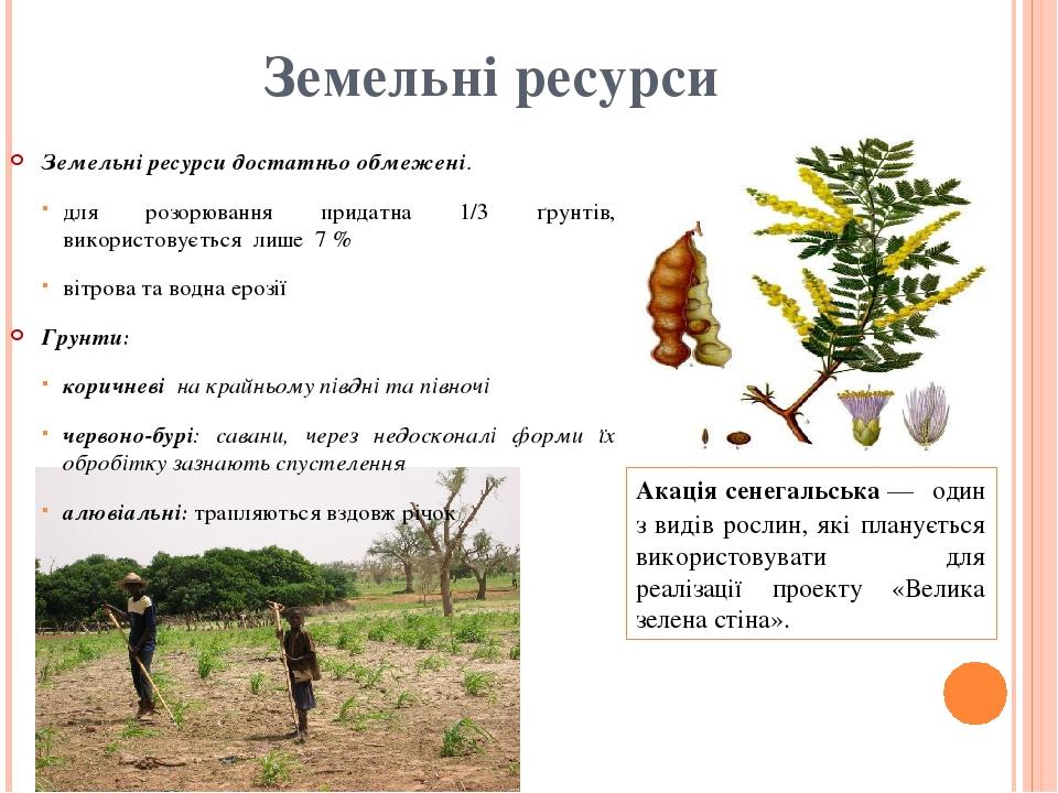 Земельні ресурси Земельні ресурси достатньо обмежені. для розорювання придатна 1/3 ґрунтів, використовується лише 7 % вітрова та водна ерозії Гру...