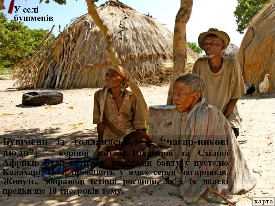 """Бушмени (з голландської – """"чагар-никові люди"""") – корінні жителі Південної та Східної Африки. Були витіснені народами банту у пустелю Калахарі. Ночі..."""
