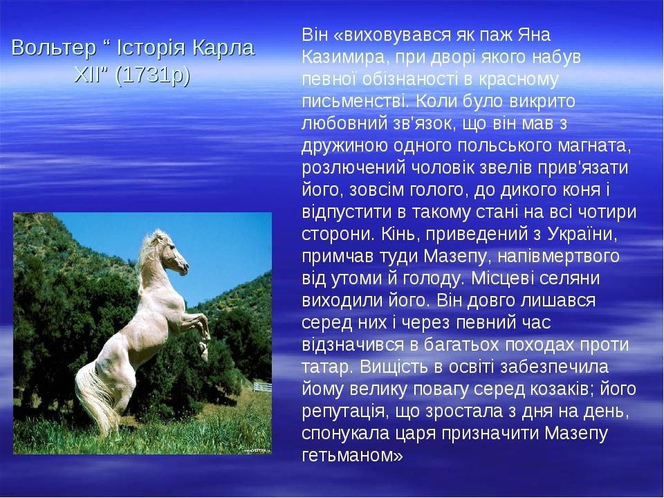 Він «виховувався як паж Яна Казимира, при дворі якого набув певної обізнаності в красному письменстві. Коли було викрито любовний зв'язок, що він м...