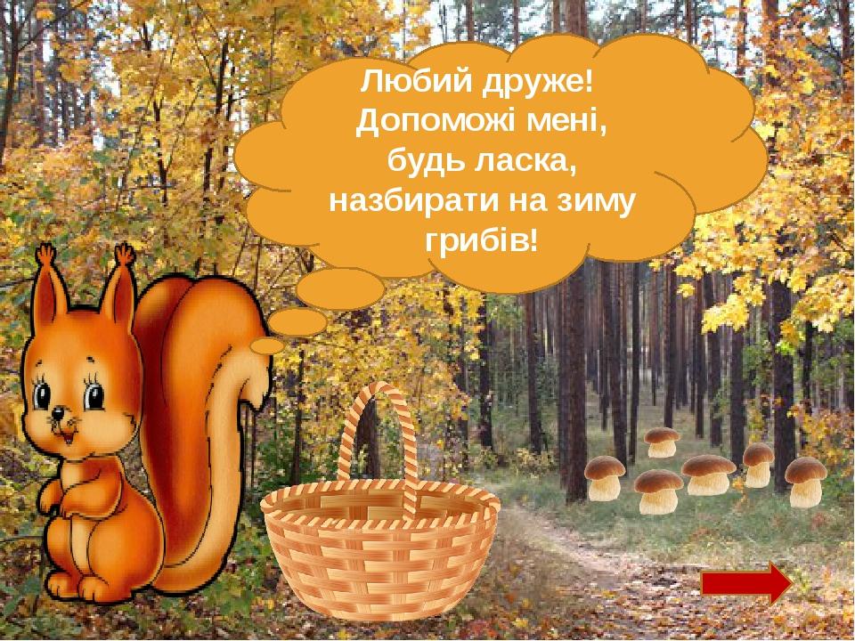 Любий друже! Допоможі мені, будь ласка, назбирати на зиму грибів!