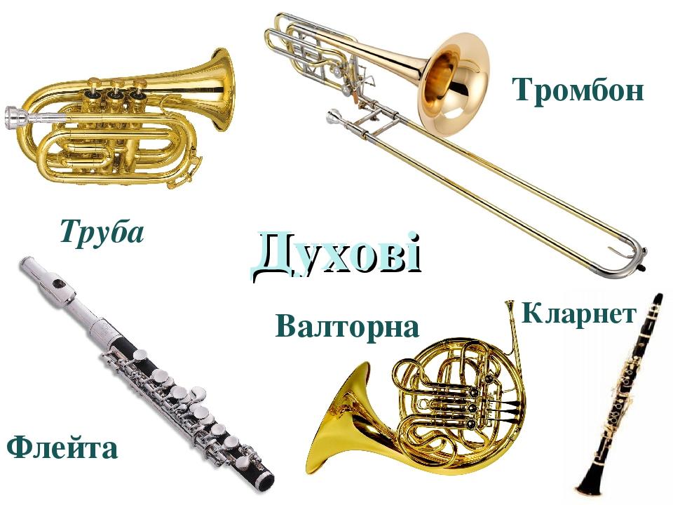 Духові Труба Флейта Тромбон Валторна Кларнет