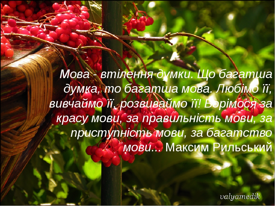 Мова - втiлення думки. Що багатша думка, то багатша мова. Любiмо ïï, вивчаймо ïï, розвиваймо ïï! Борiмося за красу мови, за правильнiсть мови, за п...