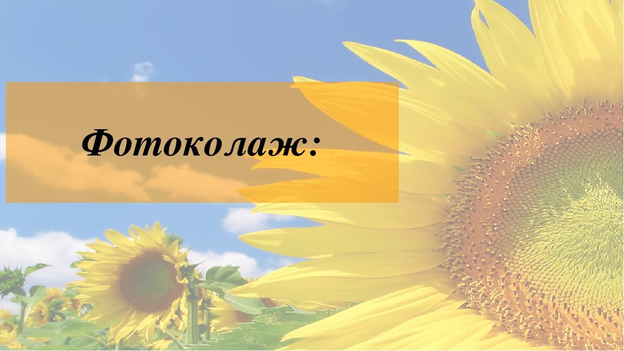 Фотоколаж: