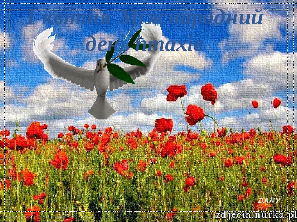 1 квітня Міжнародний день птахів