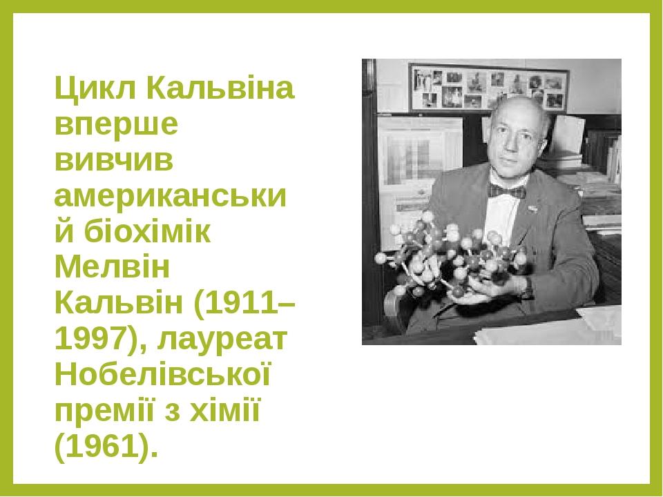 Цикл Кальвіна вперше вивчив американський біохімік Мелвін Кальвін (1911–1997), лауреат Нобелівської премії з хімії (1961).