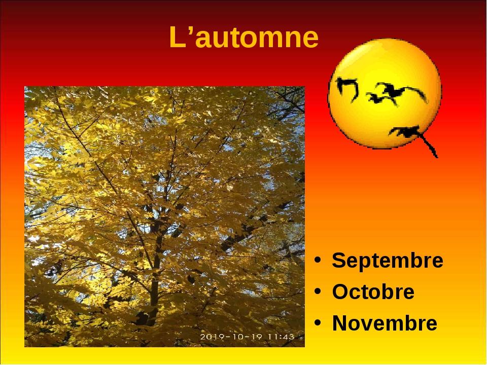 L'automne Septembre Octobre Novembre