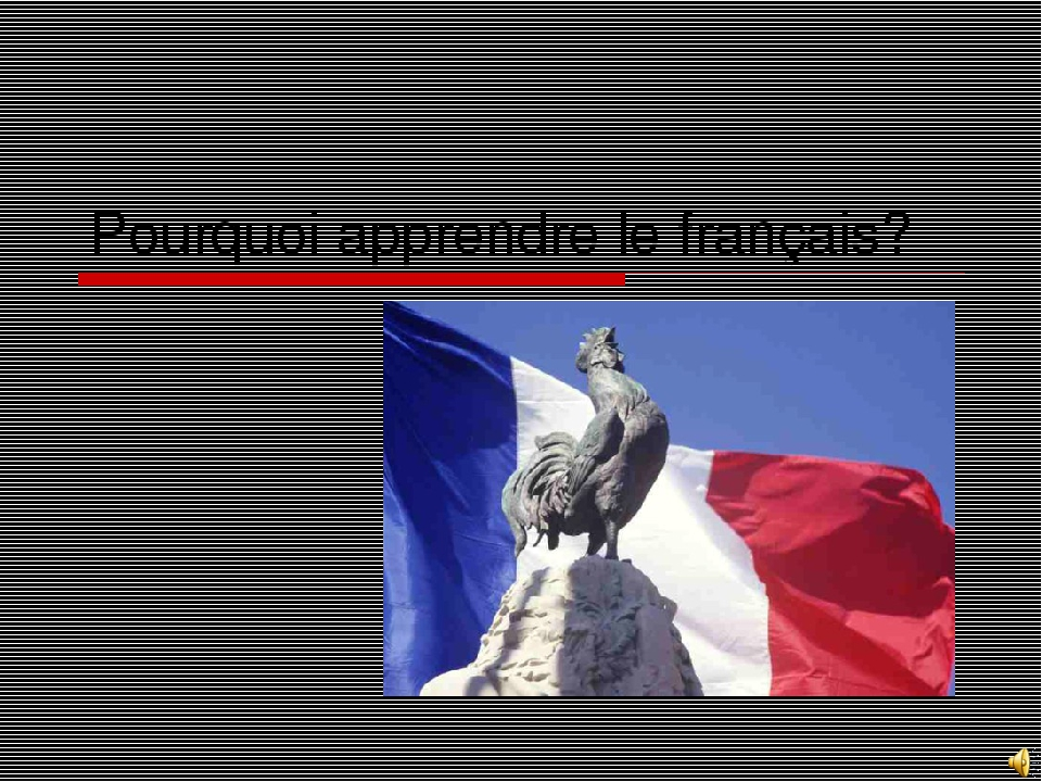 Pourquoi apprendre le français?