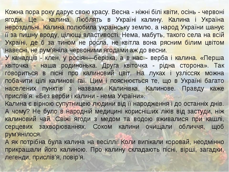 Кожна пора року дарує свою красу. Весна - ніжні білі квіти, осінь - червоні ягоди. Це - калина. Люблять в Україні калину. Калина і Україна нерозділ...