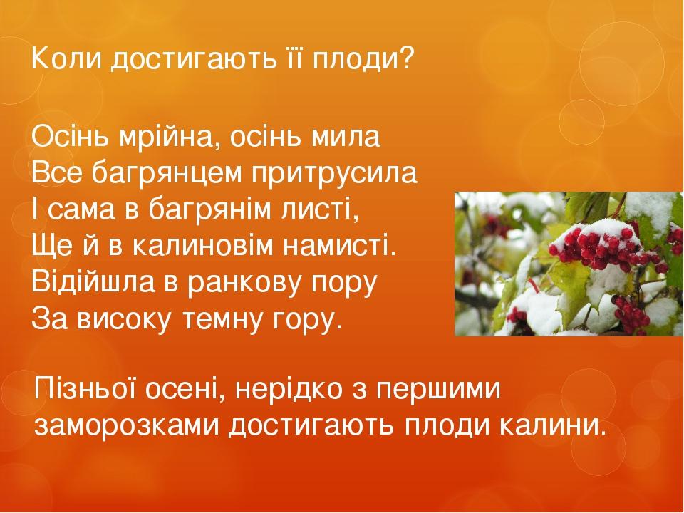 Осінь мрійна, осінь мила Все багрянцем притрусила І сама в багрянім листі, Ще й в калиновім намисті. Відійшла в ранкову пору За високу темну гору. ...