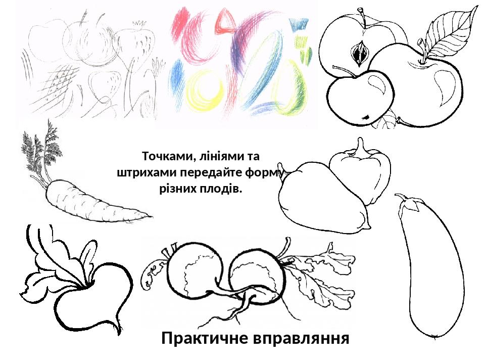 Точками, лініями та штрихами передайте форму різних плодів. Практичне вправляння
