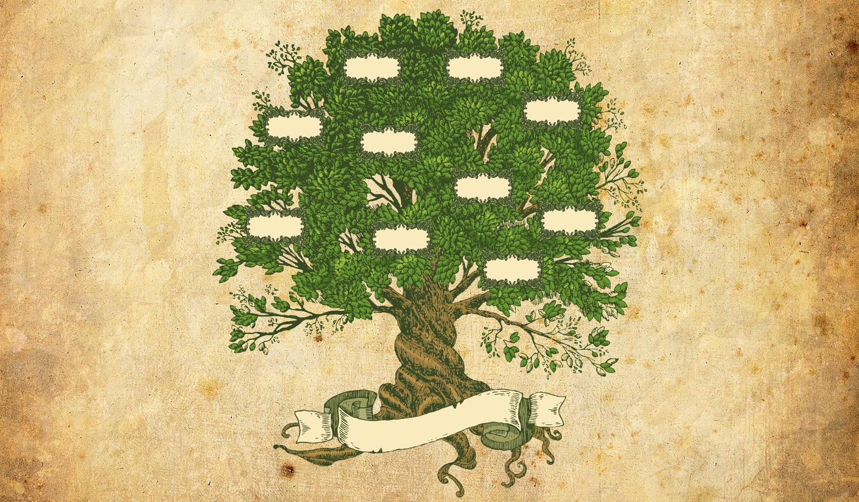 довольно картинки деревьев для семейного древа травоядное животное, роющее