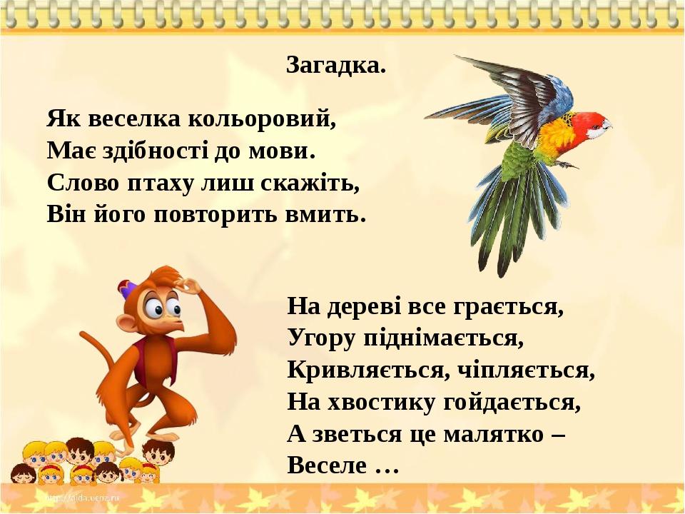 Загадка. Як веселка кольоровий, Має здібності до мови. Слово птаху лиш скажіть, Він його повторить вмить. На дереві все грається, Угору піднімаєтьс...