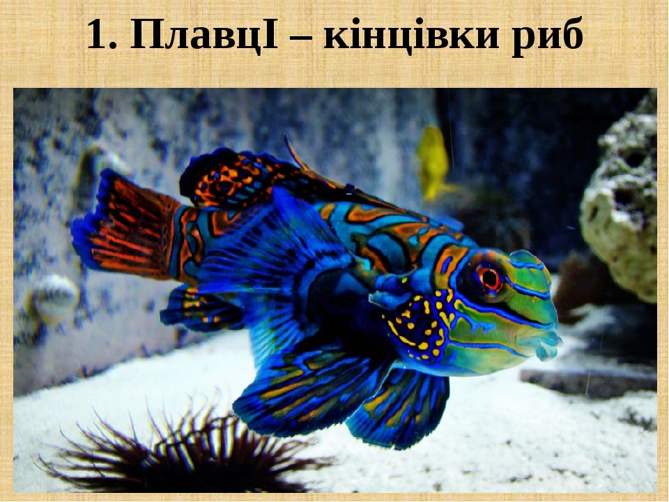 1. ПлавцІ – кінцівки риб