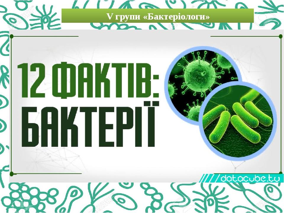 V групи «Бактеріологи»