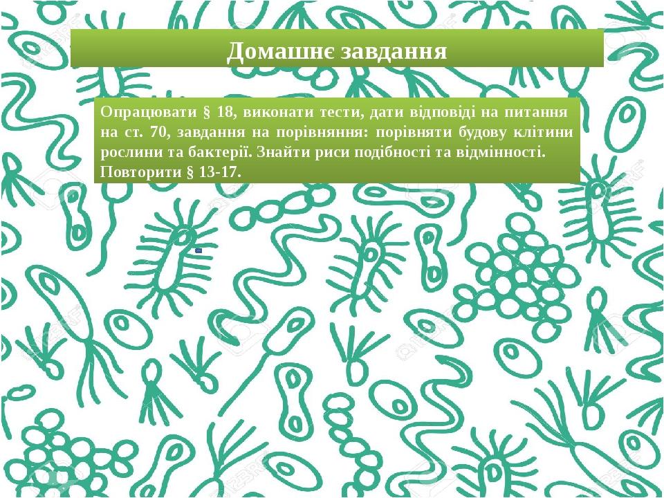 Домашнє завдання Опрацювати § 18, виконати тести, дати відповіді на питання на ст. 70, завдання на порівняння: порівняти будову клітини рослини та ...