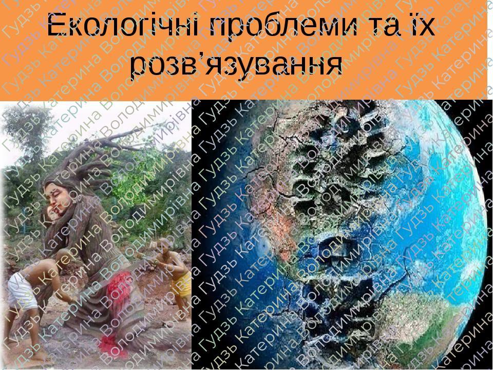 Екологічні проблеми та їх розв'язування