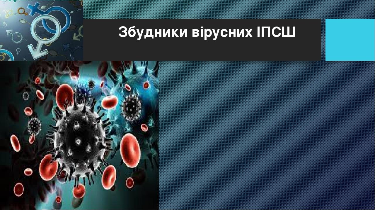 Збудники вірусних ІПСШ
