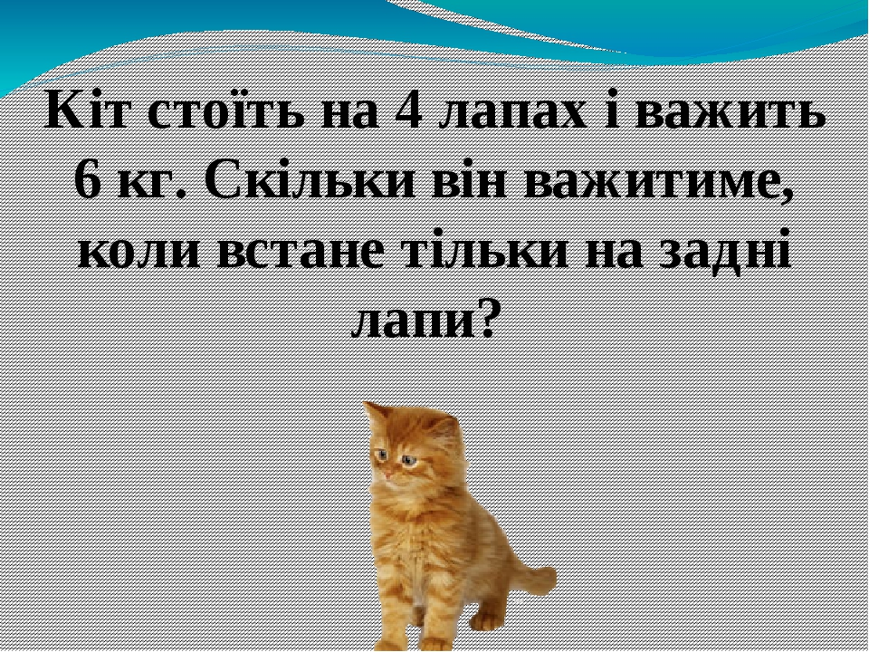 Кіт стоїть на 4 лапах і важить 6 кг. Скільки він важитиме, коли встане тільки на задні лапи?