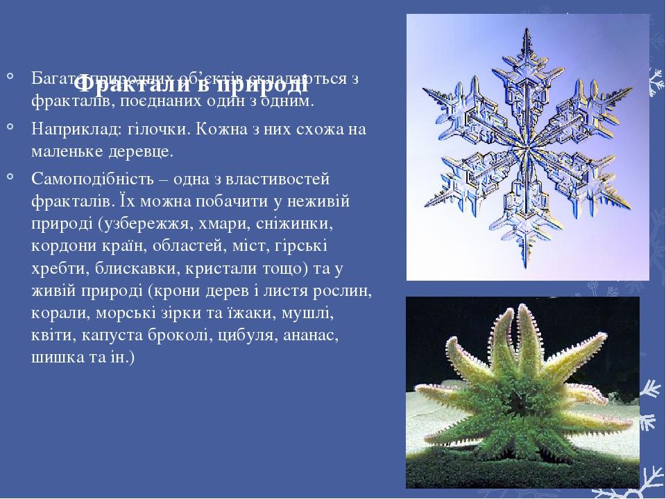 Фрактали в природі Багато природних об'єктів складаються з фракталів, поєднаних один з одним. Наприклад: гілочки. Кожна з них схожа на маленьке дер...