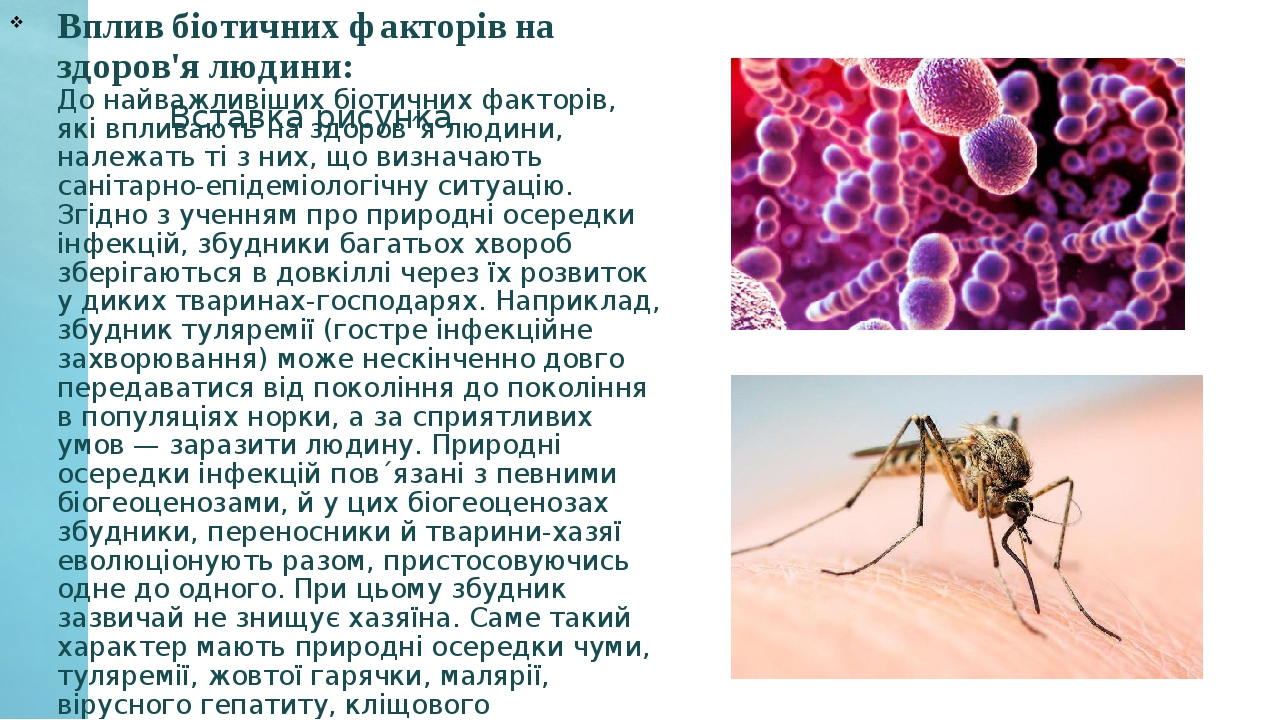 Вплив біотичних факторів на здоров'я людини: До найважливіших біотичних факторів, які впливають на здоров´я людини, належать ті з них, що визначают...