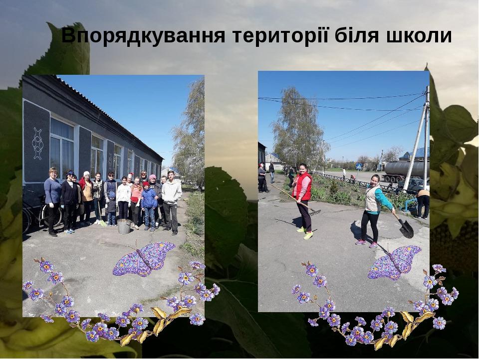 Впорядкування території біля школи