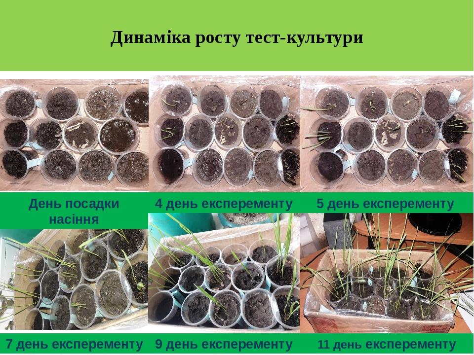 Динаміка росту тест-культури День посадки насіння 4 день експеременту 5 день експеременту 7 день експеременту 9 день експеременту 11 день експеременту