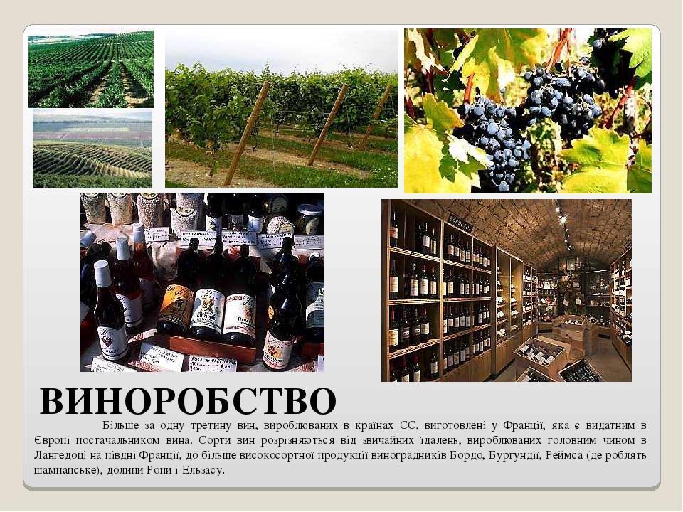 ВИНОРОБСТВО Більше за одну третину вин, вироблюваних в країнах ЄС, виготовлені у Франції, яка є видатним в Європі постачальником вина. Сорти вин ро...