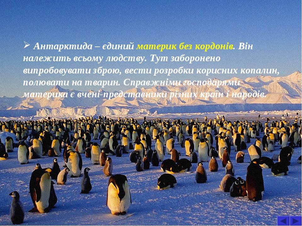 Антарктида – єдиний материк без кордонів. Він належить всьому людству. Тут заборонено випробовувати зброю, вести розробки корисних копалин, полюват...