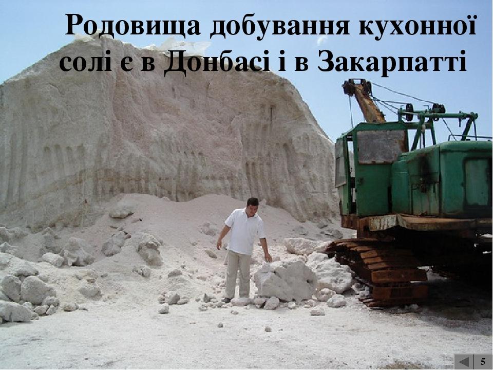 Хімічна сировина Родовища фосфоритів Сапофіт Родовища кам'яної солі 