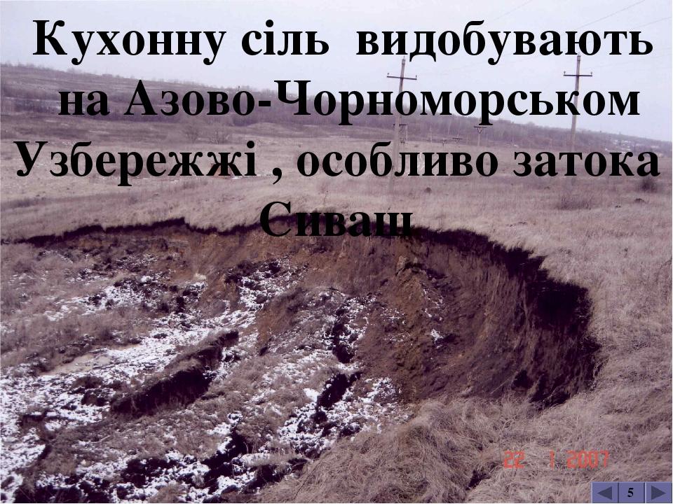 Одна з соляних шахт у Солотвиному 5 Солотвино