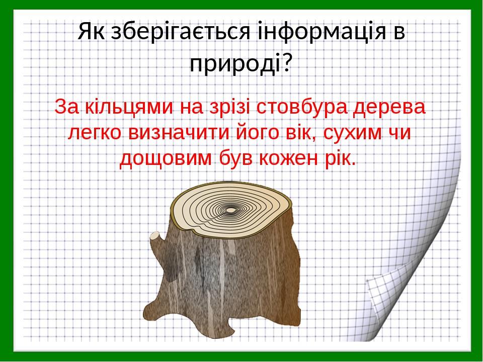 Як зберігається інформація в природі? За кільцями на зрізі стовбура дерева легко визначити його вік, сухим чи дощовим був кожен рік.
