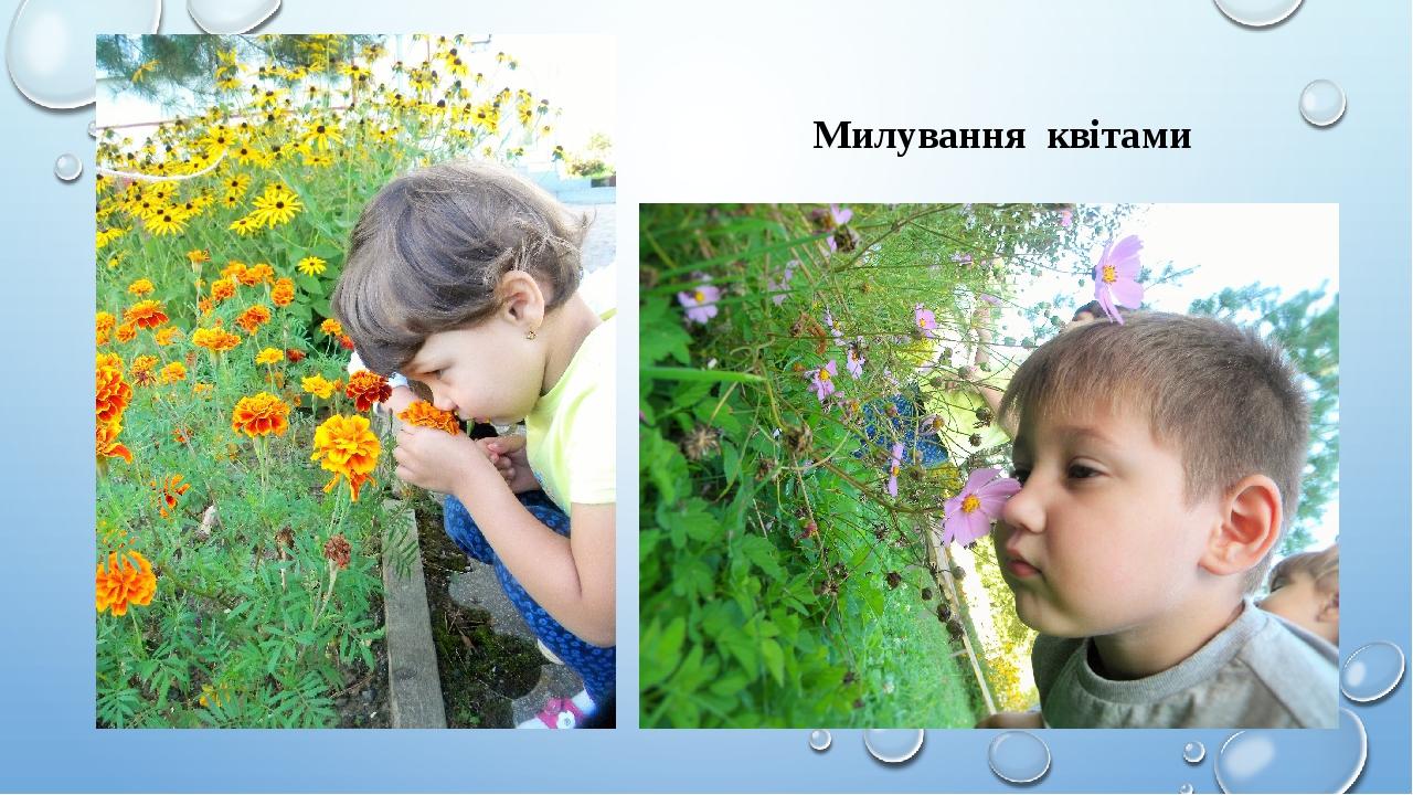 Милування квітами