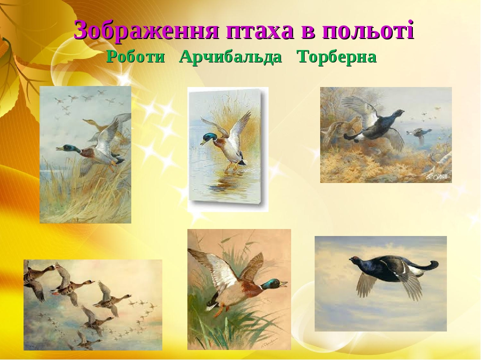 Зображення птаха в польоті Роботи Арчибальда Торберна