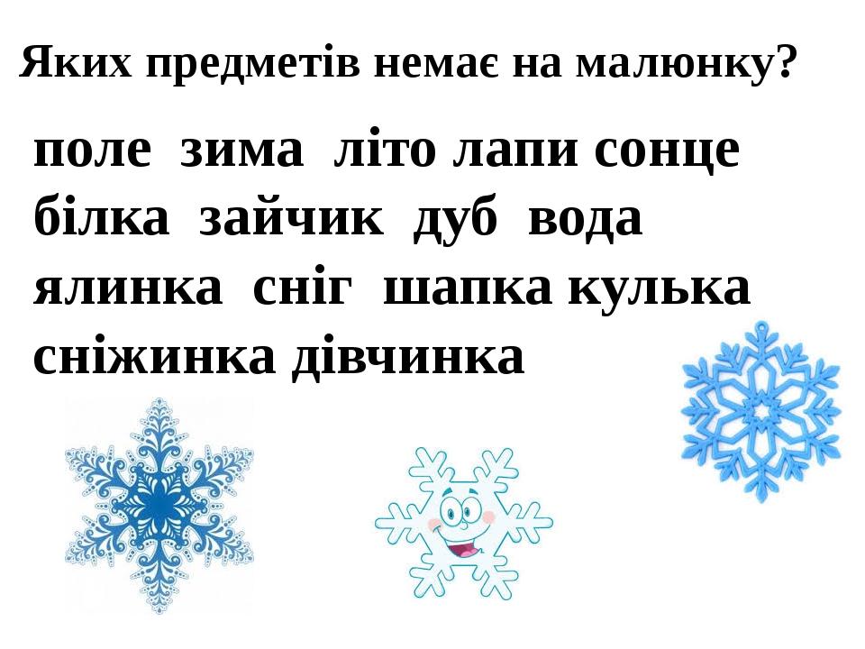 Яких предметів немає на малюнку? поле зима літо лаписонце білка зайчик дуб вода ялинка сніг шапка кулька сніжинка дівчинка