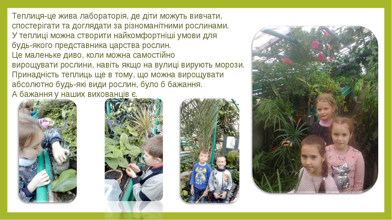 Теплиця-це жива лабораторія, де діти можуть вивчати, спостерігати та доглядати за різноманітними рослинами. У теплиці можна створити найкомфортніші...