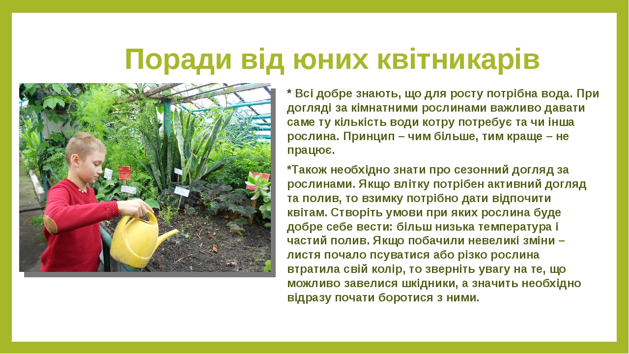 Поради від юних квітникарів * Всі добре знають, що для росту потрібна вода. При догляді за кімнатними рослинами важливо давати саме ту кількість во...