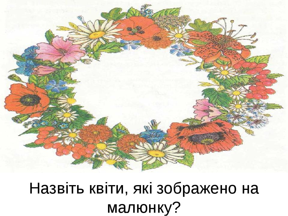 Назвіть квіти, які зображено на малюнку?