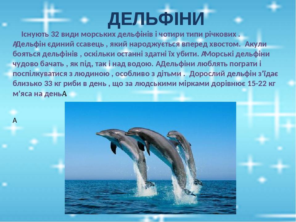 ДЕЛЬФІНИ Існують 32 види морських дельфінів і чотири типи річкових . Дельфін єдиний ссавець , який народжується вперед хвостом. Акули бояться дель...