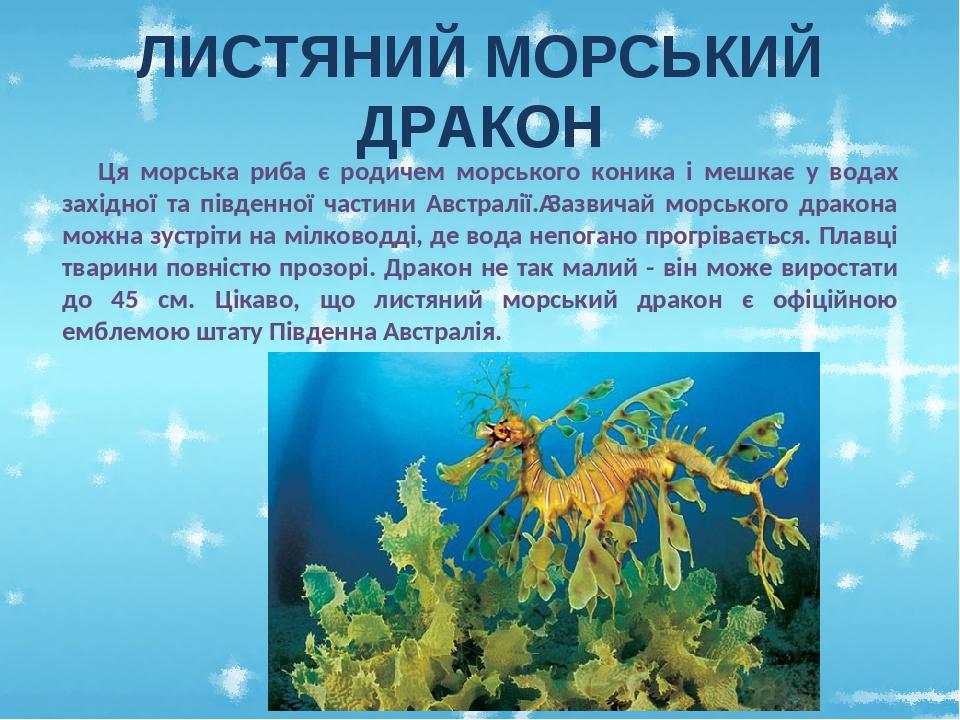 ЛИСТЯНИЙ МОРСЬКИЙ ДРАКОН Ця морська риба є родичем морського коника і мешкає у водах західної та південної частини Австралії.Зазвичай морського др...