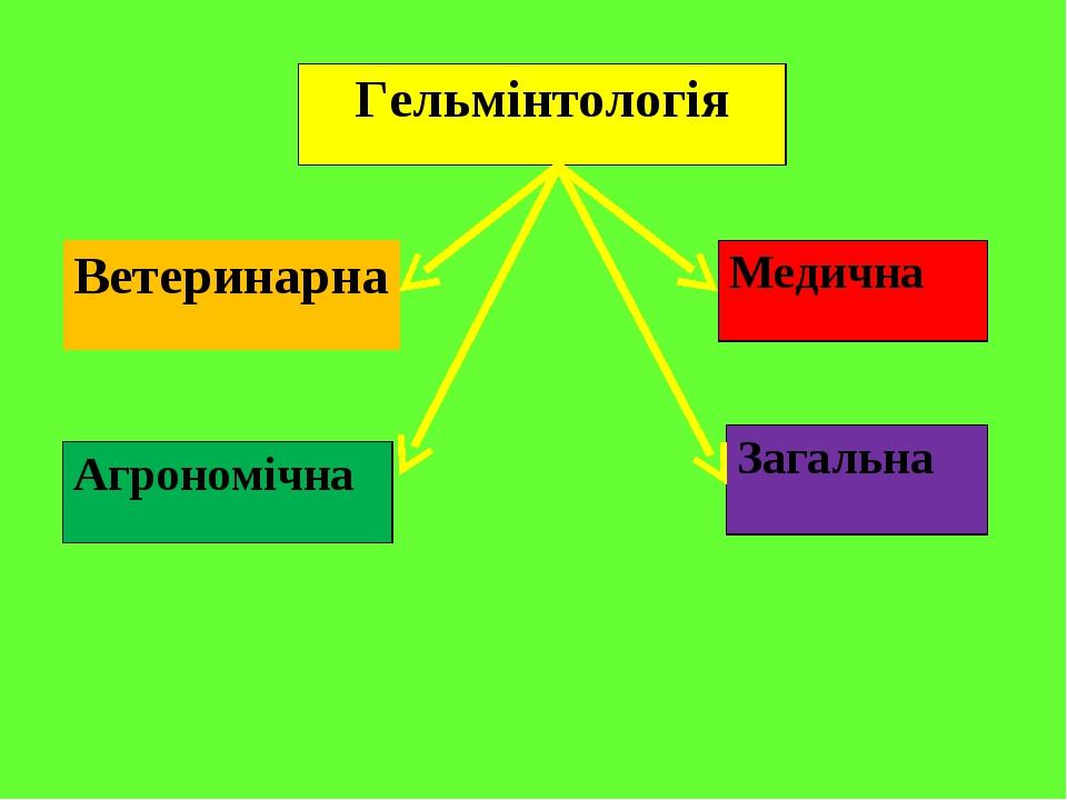 Гельмінтологія Ветеринарна Медична Агрономічна Загальна