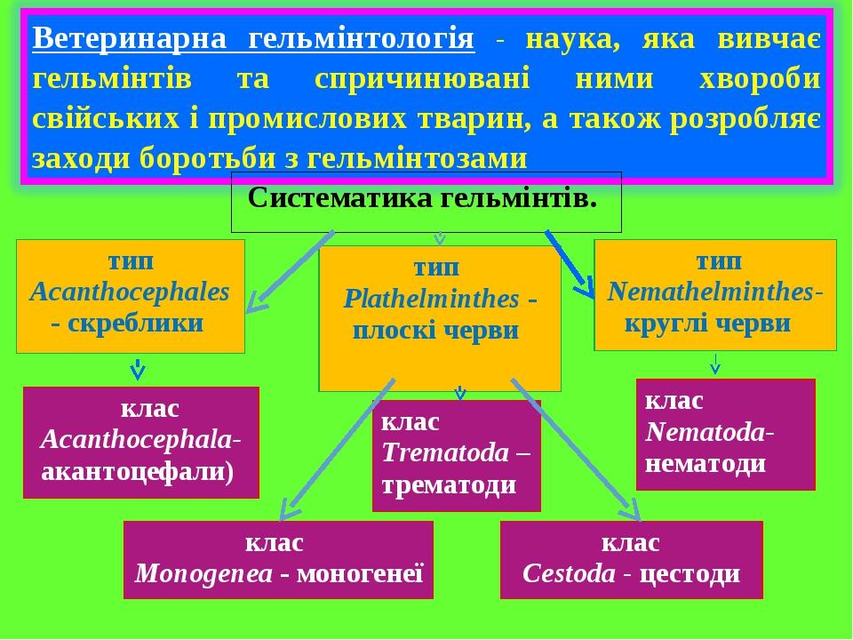 Систематика гельмінтів. тип Acanthocephales - скреблики тип Nemathelminthes- круглі черви тип Plathelminthes - плоскі черви клас Acanthocephala- ак...