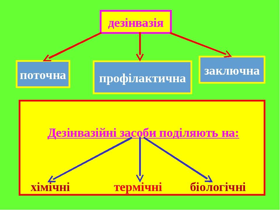 Дезінвазійні засоби поділяють на: хімічні термічні біологічні дезінвазія поточна профілактична заключна