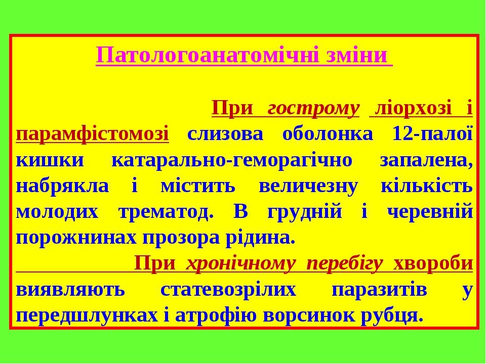 Патологоанатомічні зміни При гострому ліорхозі і парамфістомозі слизова оболонка 12-палої кишки катарально-геморагічно запалена, набрякла і містить...