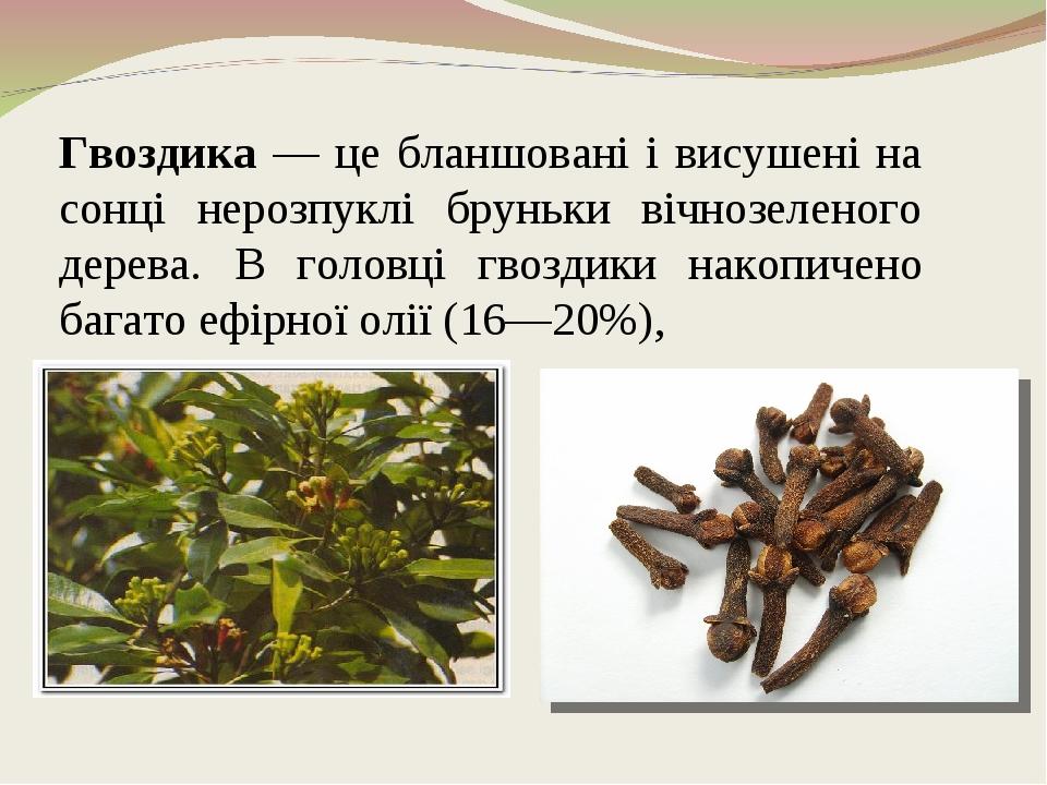 Гвоздика — це бланшовані і висушені на сонці нерозпуклі бруньки вічнозеленого дерева. В головці гвоздики накопичено багато ефірної олії (16—20%),