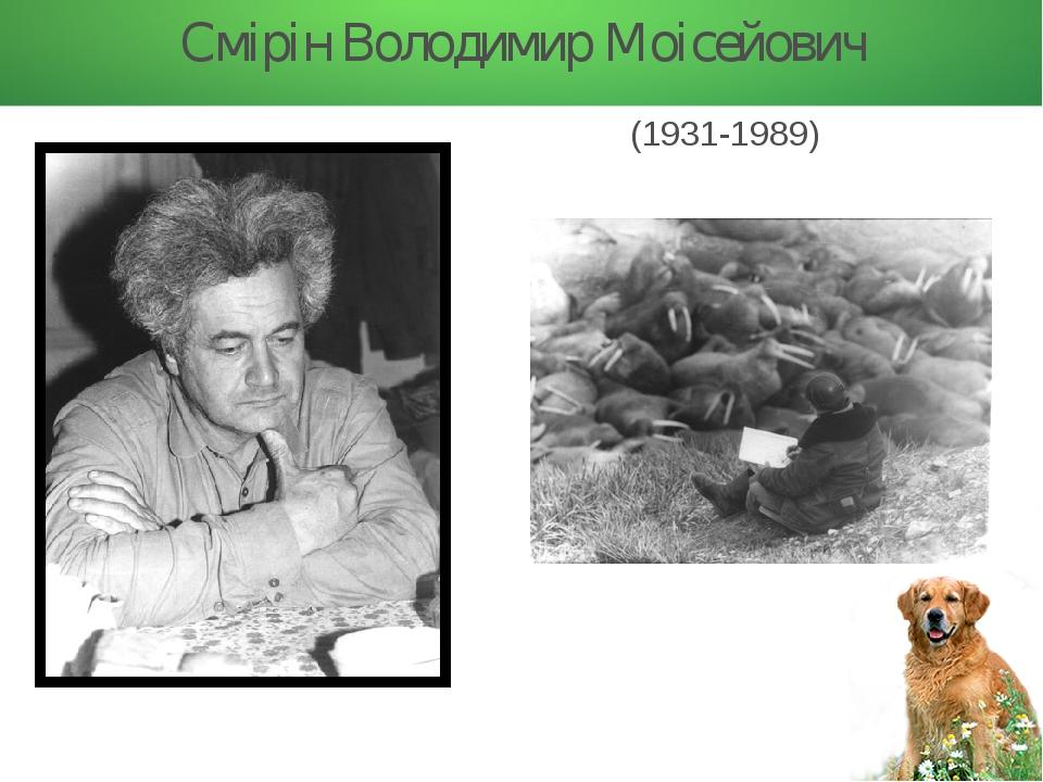 Смірін Володимир Моісейович (1931-1989)