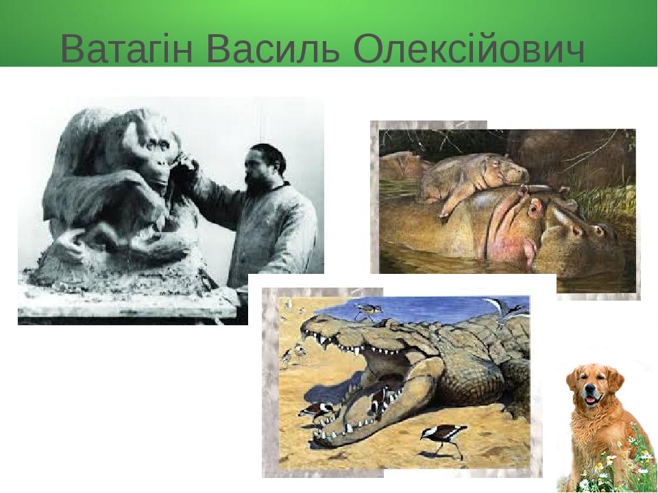 Ватагін Василь Олексійович