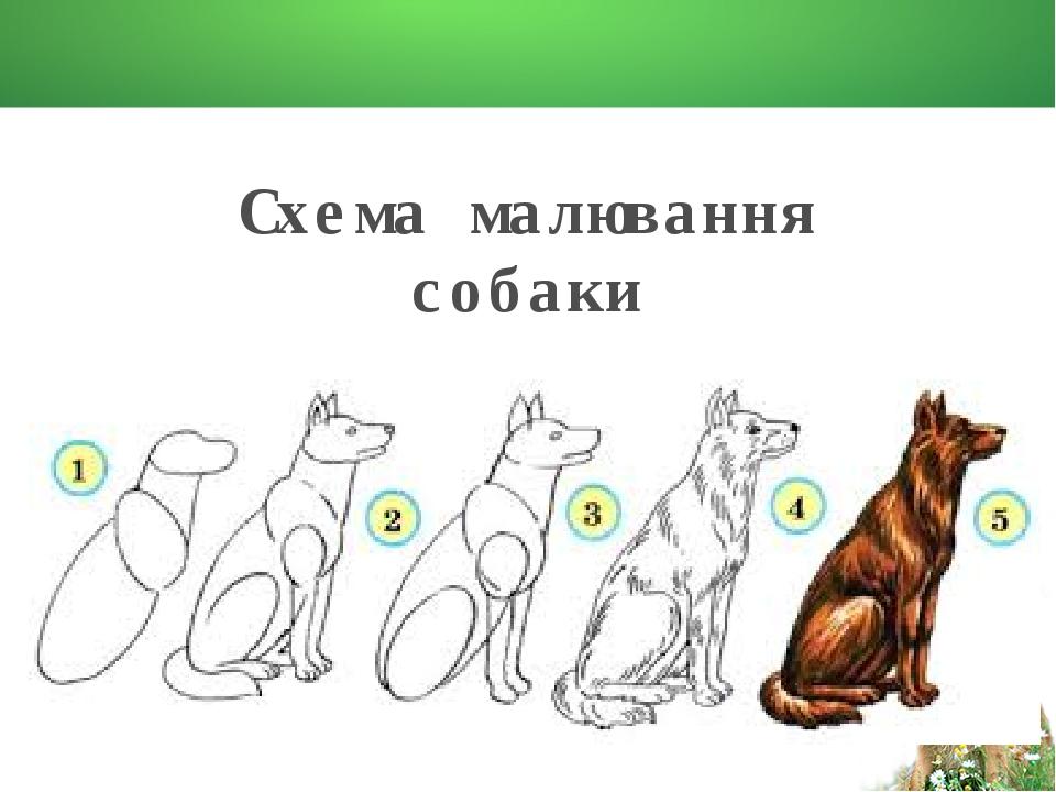 Схема малювання собаки