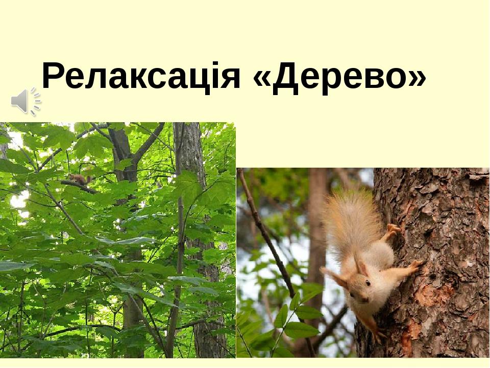 Релаксація «Дерево»